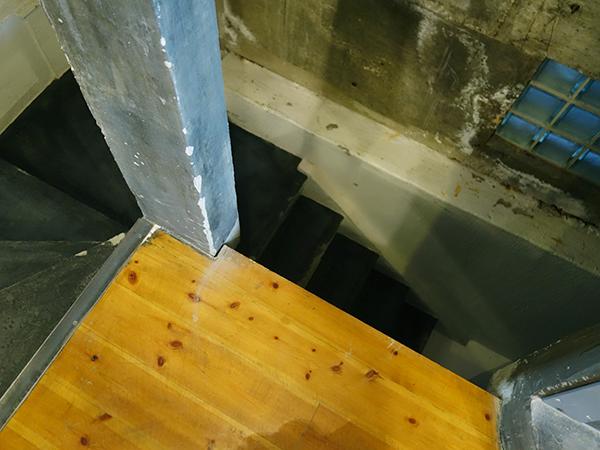 地下にできる予定の[ランスハップブック]は標本などが似合う空間に