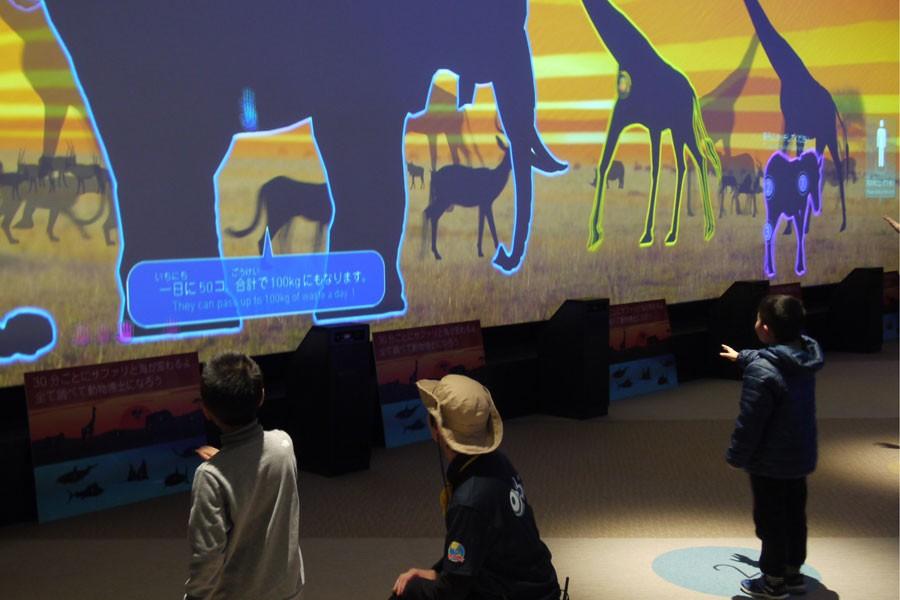 スクリーンの前で手をかざすと動物のトリビアが学べる「アニマルペディア」