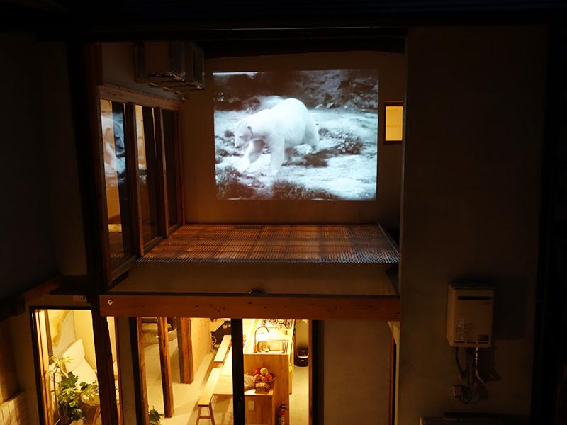 外壁にはエンサイクロペディア・シネマグラフィカのアーカイブから動物の生態を追う映像をセレクト。暗くなると楽しめるという趣向も宿ならでは