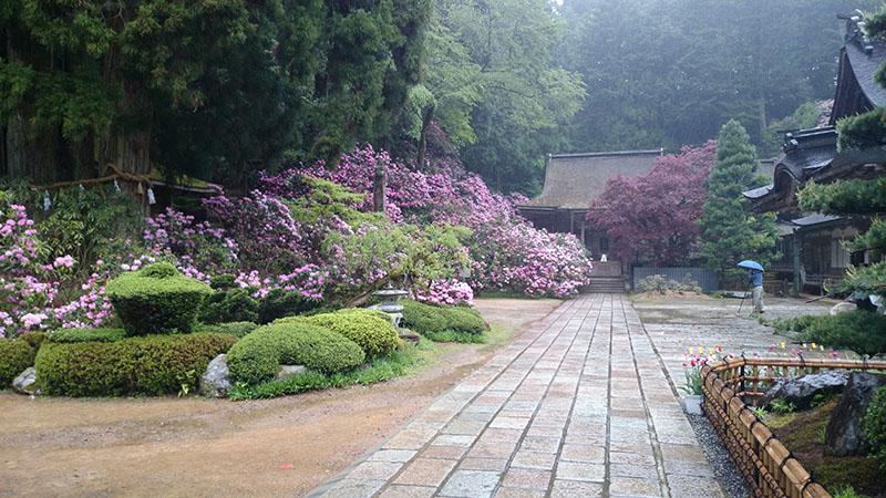 宿坊としても有名な寺院「金剛三昧院」