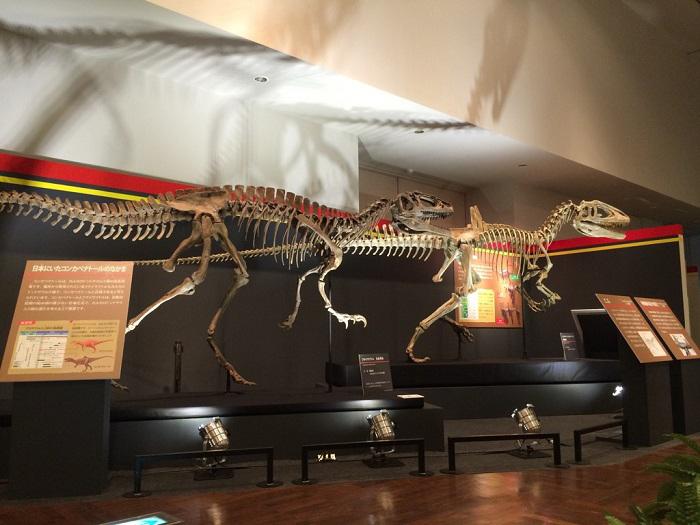 全長約6mのコンカベナトールの全身骨格