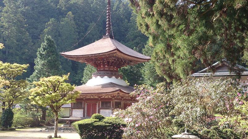 高野山開創1200年を記念にご開帳される多宝塔