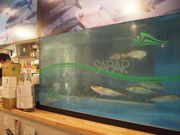 サバが元気に泳ぐ水槽の前は特等席!