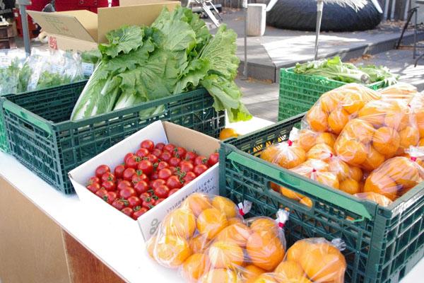 泉州の農園が手がける野菜も出店