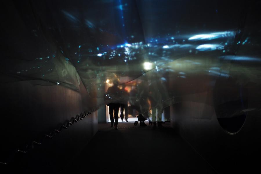 会場の出入り口には、人の動きに合わせて映像が変化するインタラクティブアートが。いわしの群れと一緒に泳ぐような感覚に