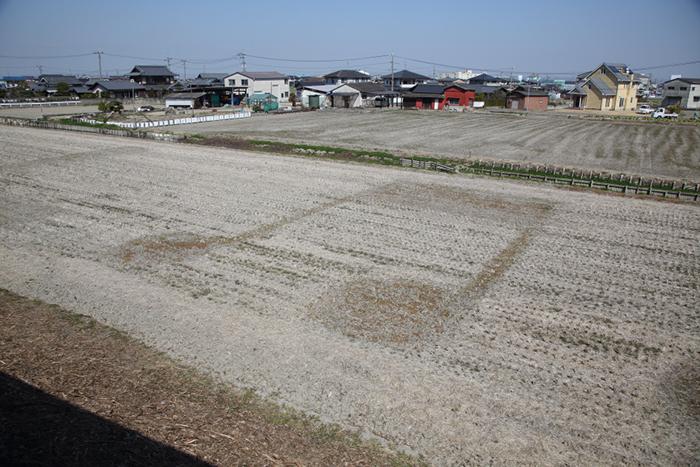 3月現在の「田んぼアート」の様子。芽が出るまで、あと1カ月ほど 撮影/Ayami