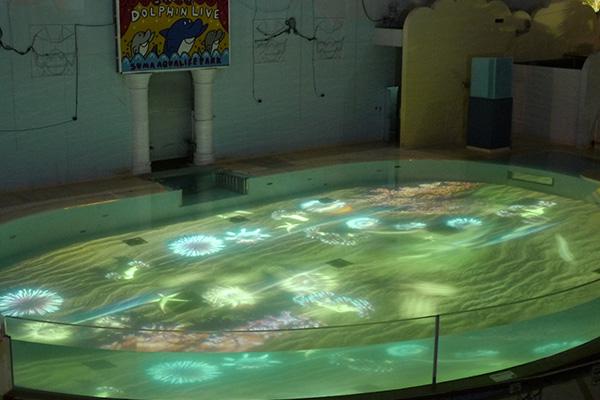 須磨海浜水族園でスタートした「須磨アクア イルミナージュ」