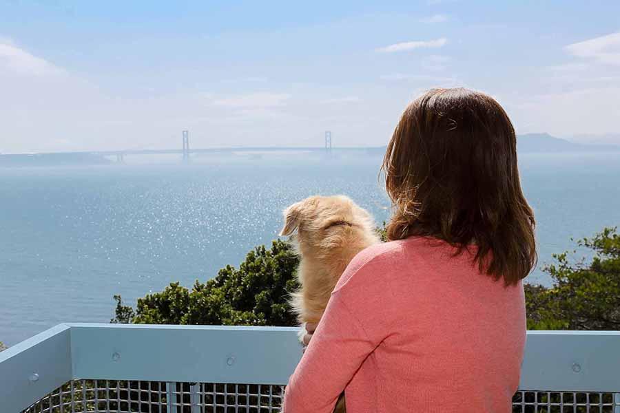 愛犬と一緒に淡路島旅行へ。ホテルアナガに、ドギー・ヴィラ誕生