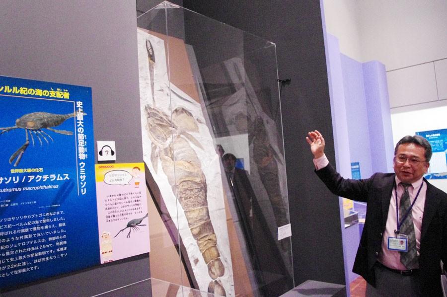 全長2mを超える約4億年前の海の支配者・ウミサソリについて説明する学芸課長の川端さん