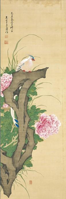 鶴亭《牡丹綬帯鳥図》 明和6年(1769) 神戸市立博物館 通期展示(4/9〜5/29)