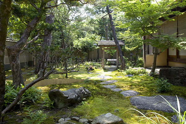 「濃茶 薄茶からの考察 東洋と西洋の出会い」をテーマに、お庭も隅々まで気配りされている