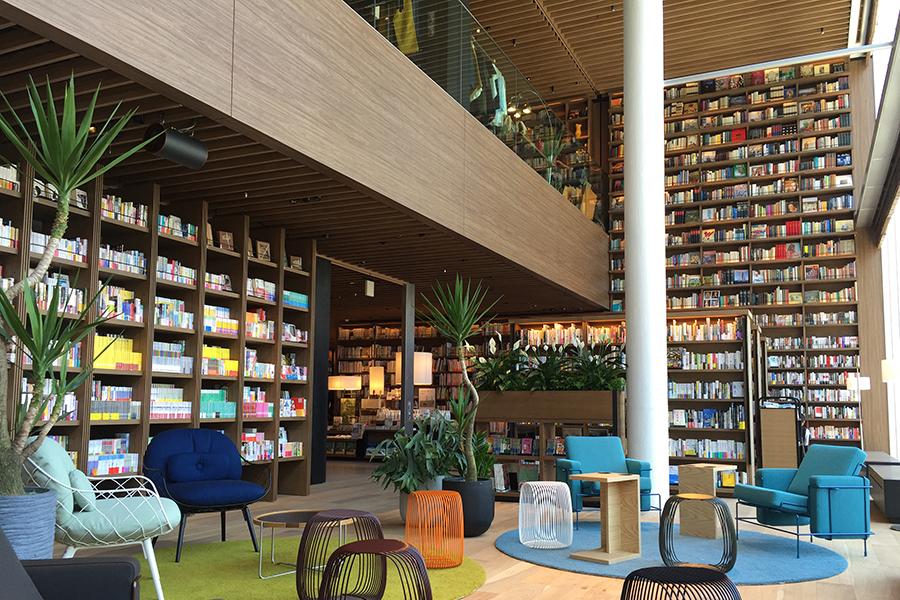 明るい陽射しが差し込む、書架に囲まれた憩いのスペース