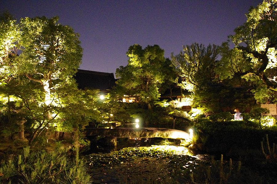 約8,000坪の敷地内に広がる日本庭園は、夜には幻想的に