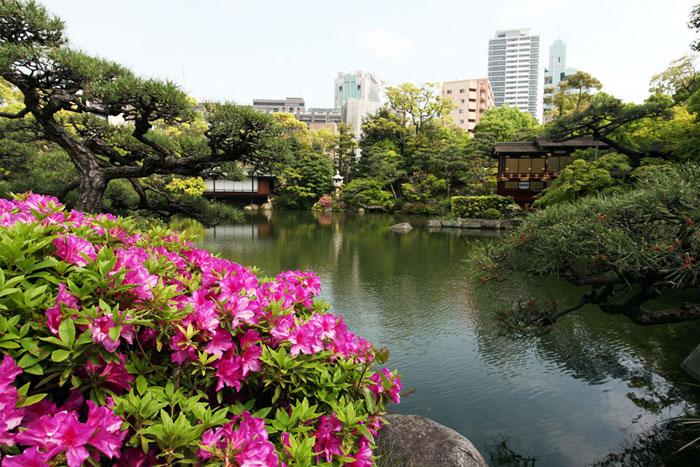 神戸会場の相楽園会館は、都会の中の日本庭園「相楽園」の中にある