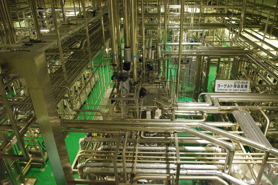 あらゆる方向に張り巡らされている配管。衛生上、原料となる牛乳は空気に触れることはない
