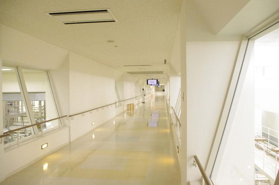 長い廊下の下では、充填されたヨーグルトが、どんどん流れていく(企業秘密のため撮影は不可)