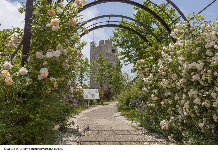 6月4日から特別開園される六甲山カンツリーハウスの「バラの小径 ローズウオーク」もピーターラビットの世界に