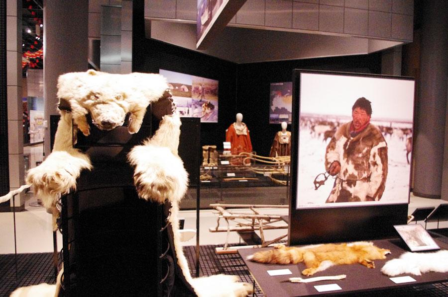 極寒のシベリア地域ではシロクマの毛皮も。実際に触れて、その温もりを感じられる