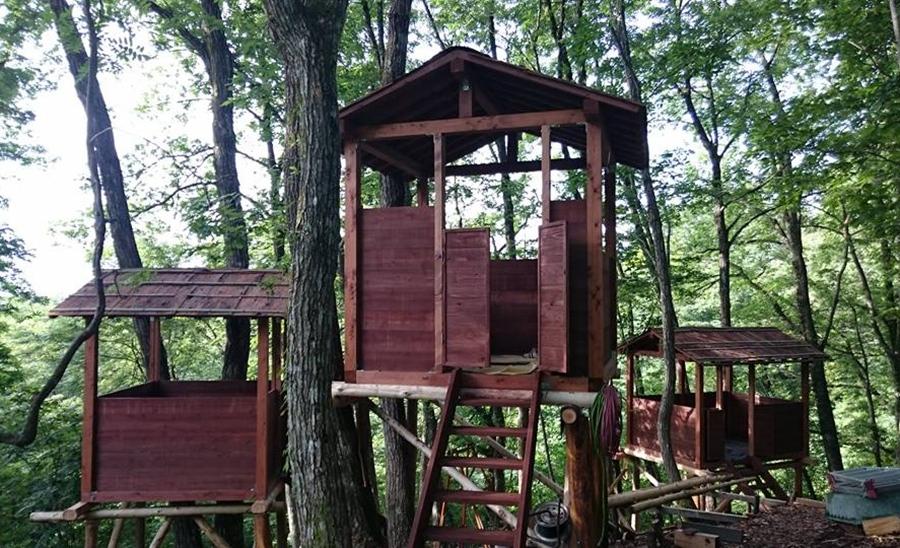 7月1日にオープンする「但馬高原植物園のツリーハウスレストラン」