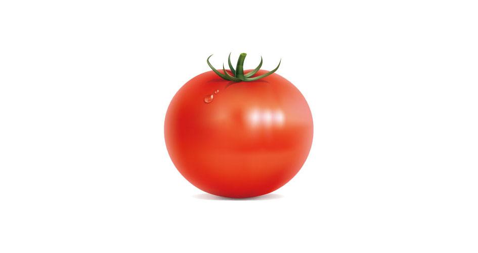 味が濃く、甘みも強い「いなみトマト」(イメージ図)