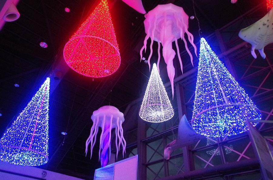 海の生き物と光を共演させたイルミネーションは館内でも充実