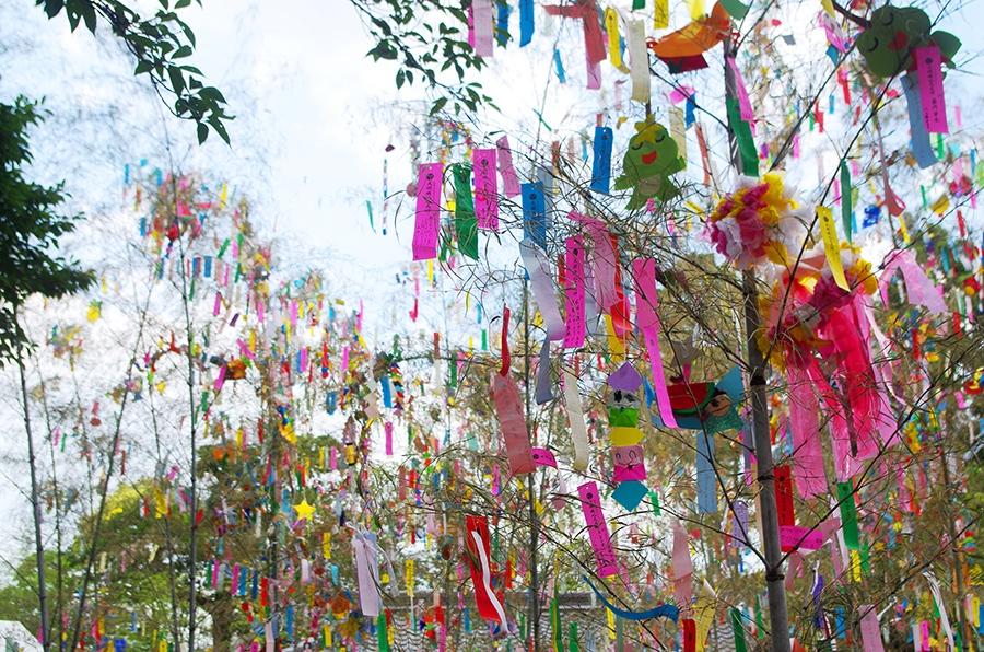 大阪交野市の「機物神社」で開催されている『七夕祭り』(7月6日・7日)