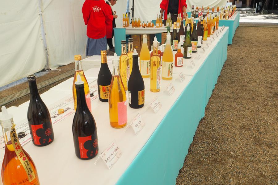 日本酒梅酒、柑橘系ブレンド梅酒、にごり梅酒などカテゴリーごとに陳列