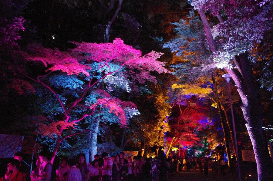 いたるところに人がいてると、こんなにも鮮やかな色彩が参道に広がる