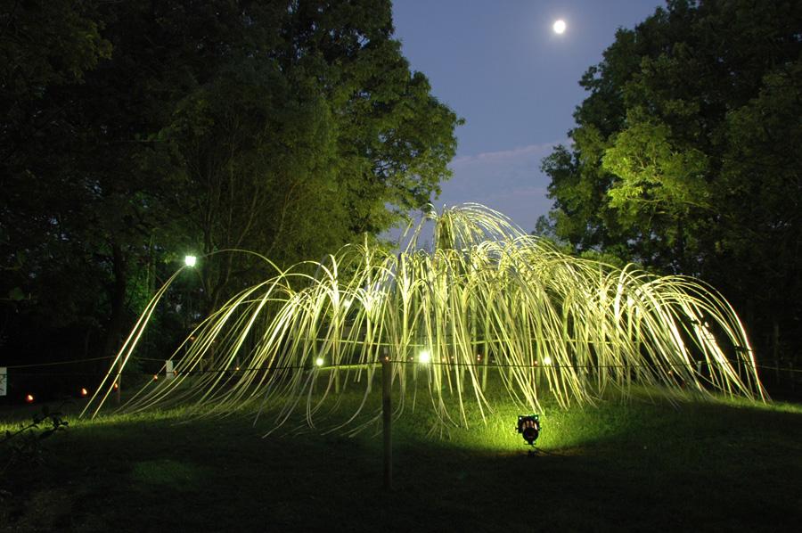 竹のしなやかさを活かした躍動感溢れるデザイン