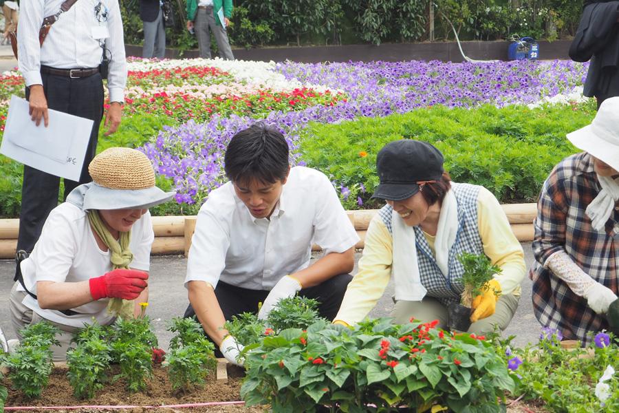 グリーン・サポーター(市民ボランティア)とともに花植えを体験する吉村洋文大阪市長