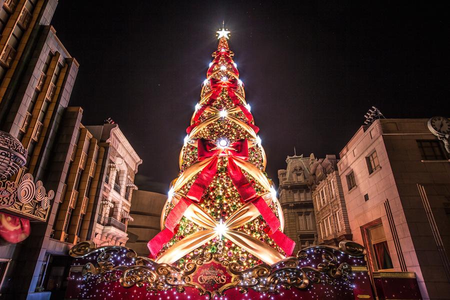一生に一度は見たいクリスマスツリー ※写真は昨年の様子