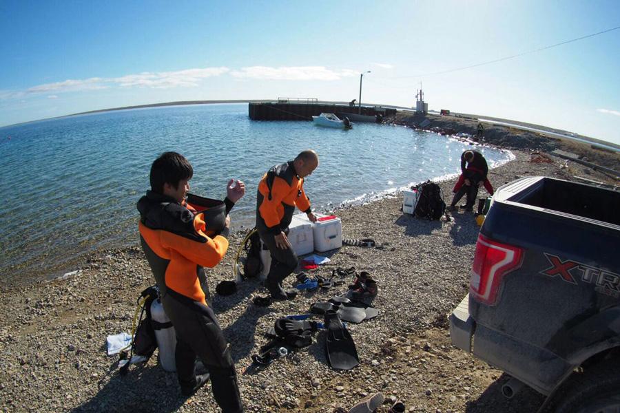 潜水のようす。極寒の海に潜水するには特別な装備が必要となる