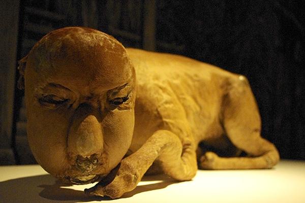 頭が人間で体が牛のその姿は、異様なのになぜか吉獣と呼ばれる妖怪・件(くだん)