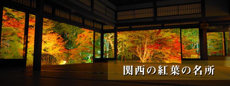 京都で観られる紅葉の名所