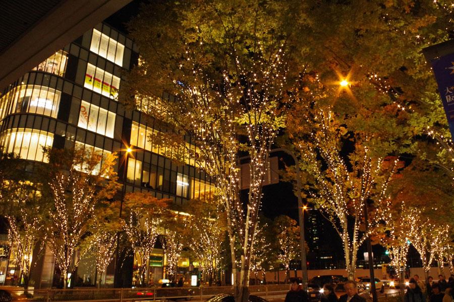 「グランフロント大阪」南館と北館の間を照らし出すケヤキ並木のイルミネーション