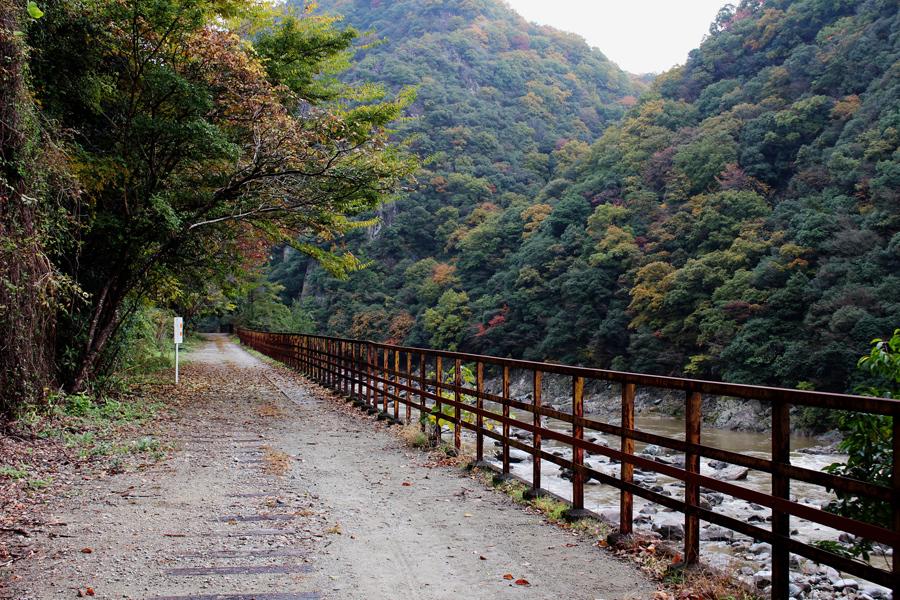 四季を楽しめる自然豊かな武庫川渓谷の景色と、枕木やトンネルなどの線路の面影を残すハイキングコース(15日・兵庫県西宮市)