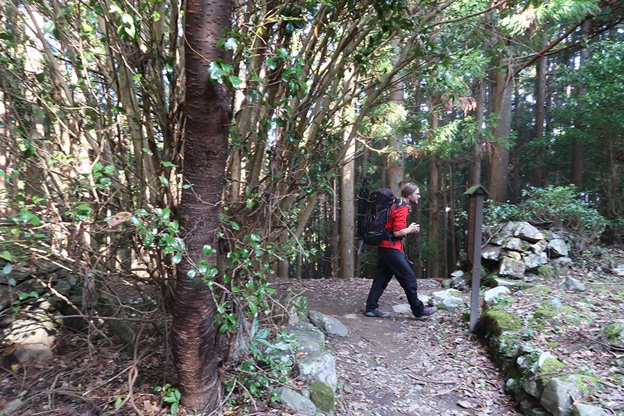 「熊野古道」を実際に歩いている人はもしかすると、日本人よりも海外からの観光客の方が多いかも