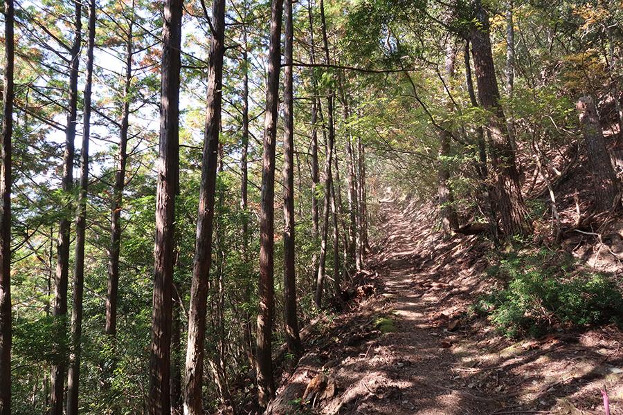 「赤木越」は上がりと下るときは急だが、途中で見える山々の景色の美しさは歩く価値あり