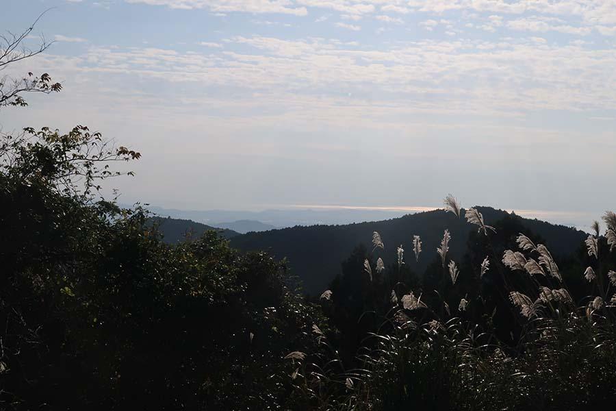 ゆるゆると高度があがり、標高538mにある「潮見峠」。道中に見える海は、これが見納めに