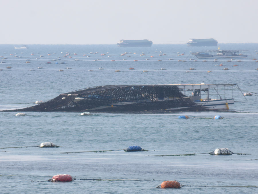 養殖網を船の天井に巻き上げて収穫するため、明石では「もぐり船」と呼ばれる