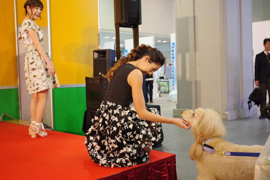 授賞式後、ステージ近くで見ていた観客犬・つぼみちゃんに近づき愛撫する森泉