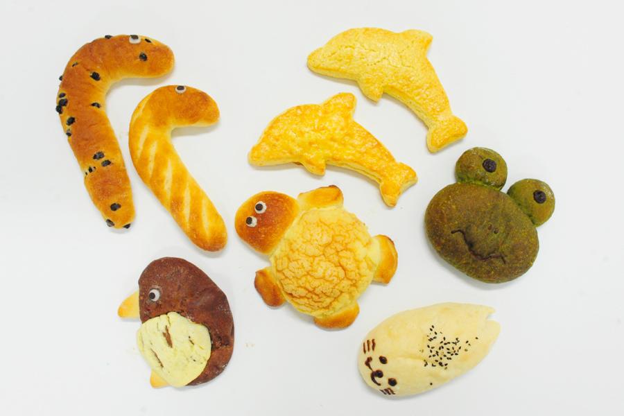 カメ、ペンギン、チンアナゴ&ニシキアナゴ、カエル、ゴマフアザラシ、イルカ(スコーン/2種)の全7種類(各330円)