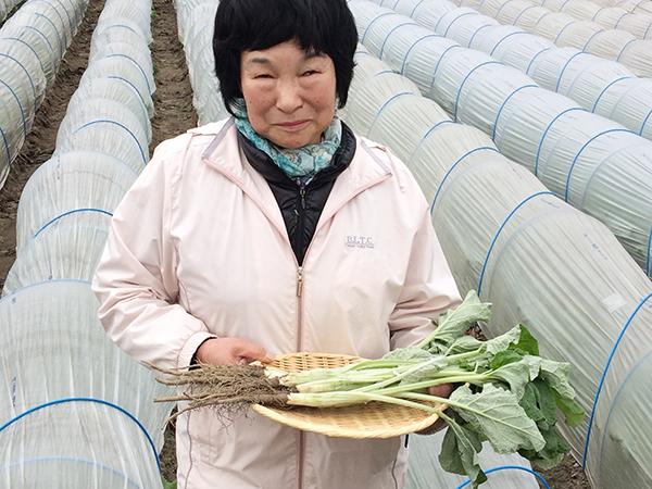 ハウス栽培の畑の前で、八尾若ごぼうを持つ森川雅恵さん