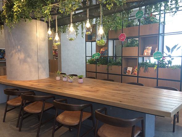 「ボタニカル」をテーマに緑があふれる明るい店内。中央のテーブルにコンセントとUSBポートを設置