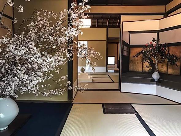 ひと足早く、満開の桜がいけられた空間。屏風との対比が興味深い