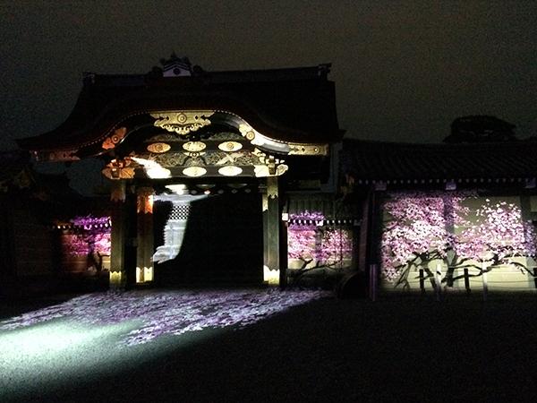 二条城の唐門に、投影されたプロジェクションマッピング。桜の木の間を鶴が舞う