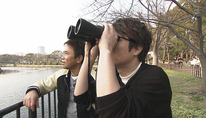 双眼鏡で「人面石」を探す浜田と淳(毎日放送『ごぶごぶ 春に行きたい!大阪新名所かまぼこ板スペシャル!〜後編〜』)