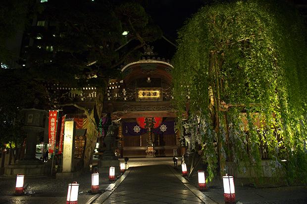 約150基の灯籠で幻想的に照らされる六角堂と、迫力あるいけ花作品が間近で鑑賞できる