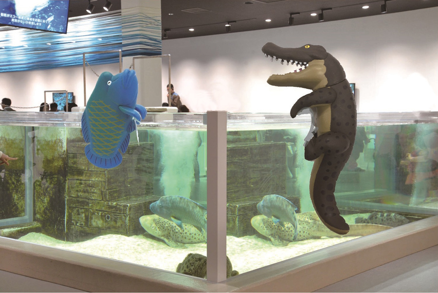 人気の高いナポレオンフィッシュ(左)やイリエワニなどの大型動物もフチに登場