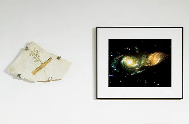 野村仁《Plagiophyllum & NGC 2207+IC 2163(1.63億光年)》2002-2006 Courtesy of NAOJ ※参考作品(撮影:豊永政史)